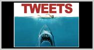Imagen de ¿Quieres seguir a tu tiburón favorito en Twitter? En Australia casi es posible