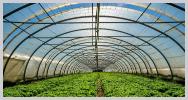 Caso cliente greenplas iberica distribuidor plasticos mallas uso agricola